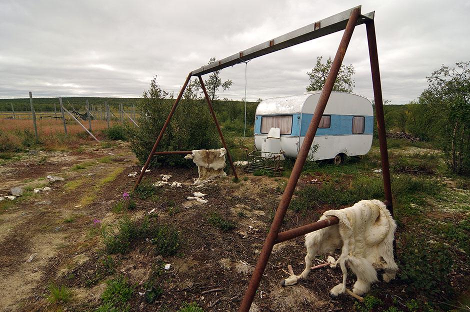 Pâturages d'hiver déserts en marge de la 93. Finnmark.