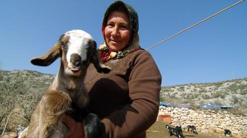 Return journey amongst the Yörük! (Silifke, Turkey – KM 8,935)