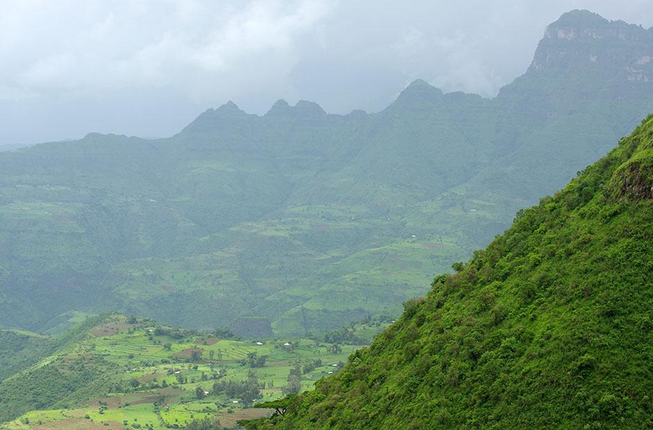 Contreforts des Simien dans leur plus bel apparat avec la saison des pluies qui sévit...nuances de vert! Région Amhara, République fédérale démocratique d'Éthiopie.
