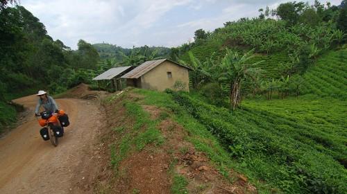 Of gorillas and men! (Kisoro, Uganda – KM 18,075)